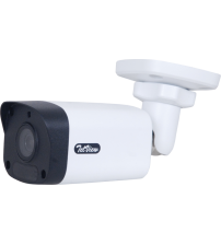 2MP Dome Outdoor Infrared IP Camera (WIW320)
